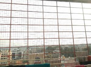 3 BHK Flat for Rent in Nester Raga, Mahadevapura | View From Balcony